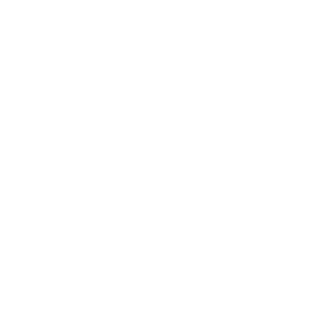 Accessibilité Icone